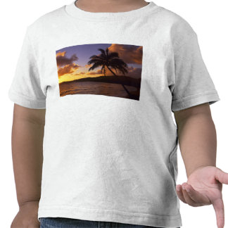 USA, Hawaii, Kauai, Colorful sunrise in a 2 T-shirts