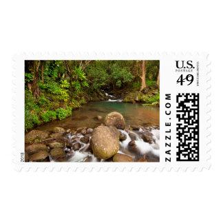 USA, Hawaii, Kauai. Creek Flowing Stamp