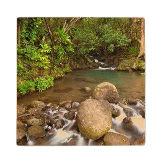 USA, Hawaii, Kauai. Creek Flowing Wooden Coaster