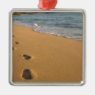 USA Hawaii Kauai Kapa a beachfront RF Christmas Ornaments