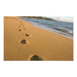 USA, Hawaii, Kauai, Kapa'a, beachfront. Photo Print