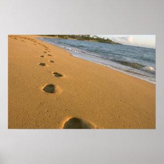 USA, Hawaii, Kauai, Kapa'a, beachfront. Poster