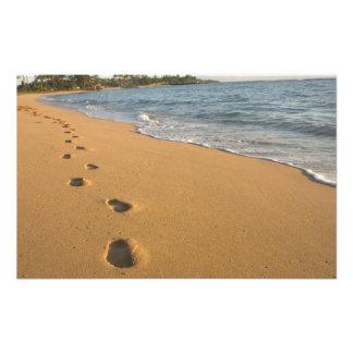 USA, Hawaii, Kauai, Kapa'a, beachfront. RF) Photo Print