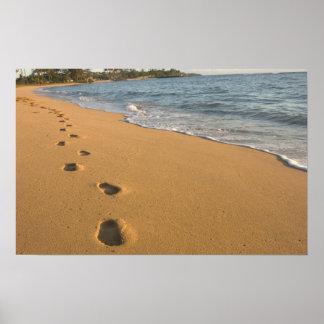 USA, Hawaii, Kauai, Kapa'a, beachfront. RF) Poster