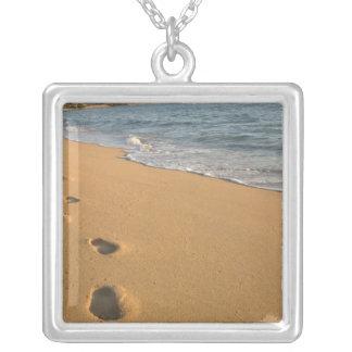 USA, Hawaii, Kauai, Kapa'a, beachfront. RF) Silver Plated Necklace