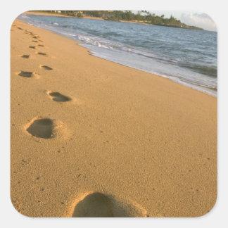 USA, Hawaii, Kauai, Kapa'a, beachfront. Square Sticker