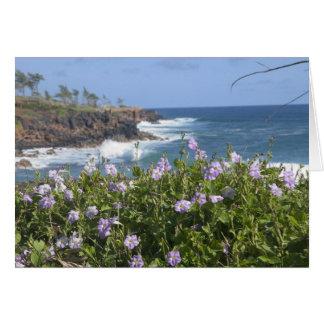 USA, Hawaii, Kauai, near Kapaa, northwest Card