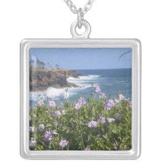 USA, Hawaii, Kauai, near Kapaa, northwest Silver Plated Necklace