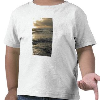 USA, Hawaii, Kauai, southwest coast, near Waimea Tee Shirts