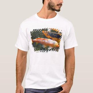 USA, Hawaii, Lanai T-Shirt