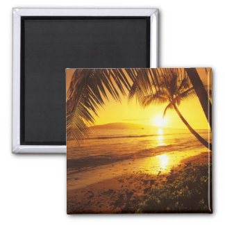 USA, Hawaii, Maui, Colorful sunset in a 2 2 Inch Square Magnet