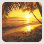 USA, Hawaii, Maui, Colorful sunset in a 2 Square Sticker