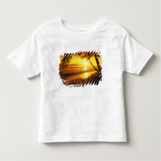 USA, Hawaii, Maui, Colorful sunset in a 2 T-shirt