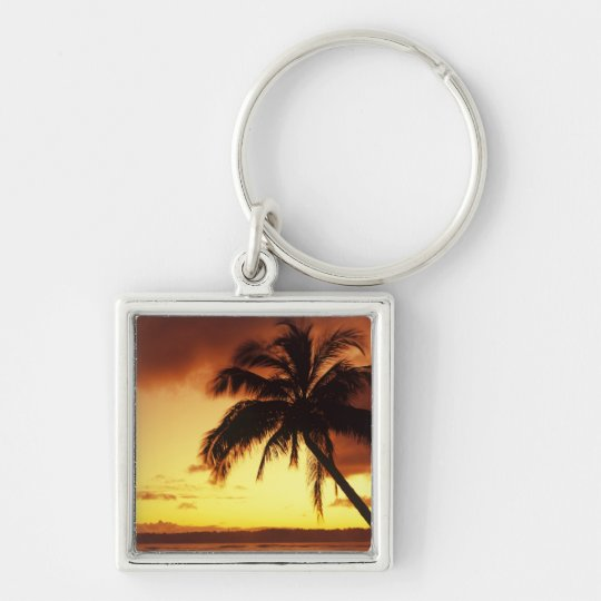 USA, Hawaii, Maui, Colorful sunset in a Keychain