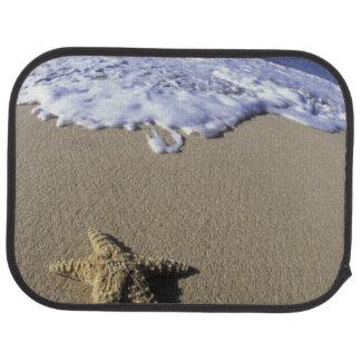 USA, Hawaii, Maui, Makena Beach, Starfish and Car Floor Mat
