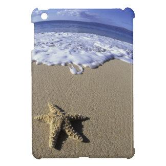 USA Hawaii Maui Makena Beach Starfish and iPad Mini Covers