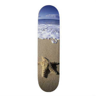 USA, Hawaii, Maui, Makena Beach, Starfish and Skateboard Deck