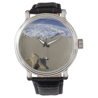 USA, Hawaii, Maui, Makena Beach, Starfish and Wrist Watch