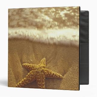 USA, Hawaii, Maui, Maui, Kihei, Starfish and 3 Ring Binder