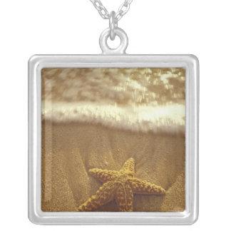 USA, Hawaii, Maui, Maui, Kihei, Starfish and Silver Plated Necklace