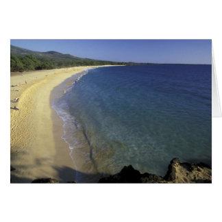 USA, Hawaii, Maui, Maui, Makena Beach, Card
