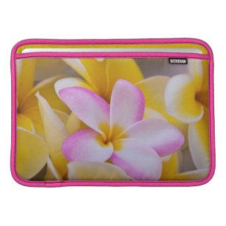 USA, Hawaii, Oahu, Plumeria flowers in bloom 1 Sleeves For MacBook Air