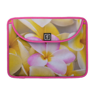 USA, Hawaii, Oahu, Plumeria flowers in bloom 1 Sleeves For MacBook Pro