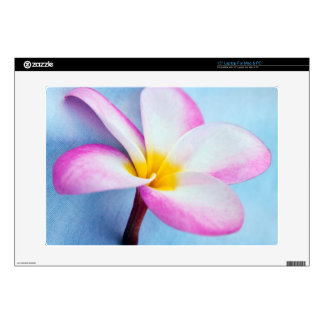 """USA, Hawaii, Oahu, Plumeria flowers in bloom 2 Decal For 15"""" Laptop"""