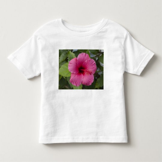 USA, Hawaii, Oahu. The Hibiscus is the 2 Toddler T-shirt