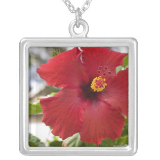 USA, Hawaii, Oahu. The Hibiscus is the Silver Plated Necklace
