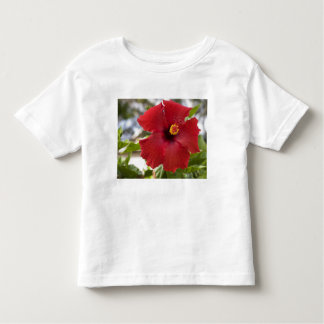 USA, Hawaii, Oahu. The Hibiscus is the Toddler T-shirt