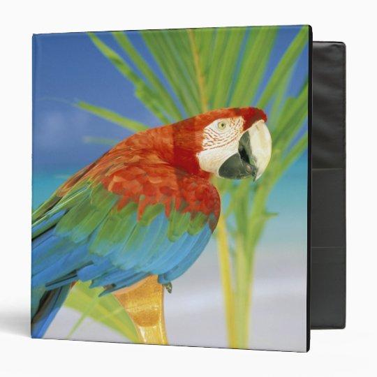 USA, Hawaii. Parrot Binder