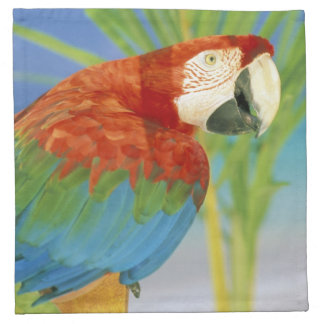 USA, Hawaii. Parrot Cloth Napkin