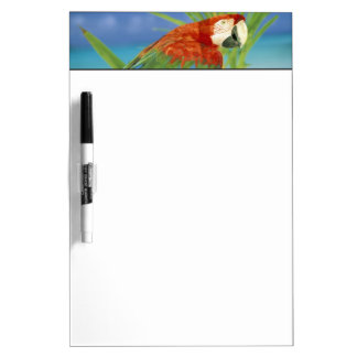 USA, Hawaii. Parrot Dry-Erase Boards