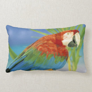 USA, Hawaii. Parrot Lumbar Pillow