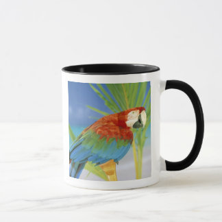 USA, Hawaii. Parrot Mug