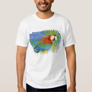 USA, Hawaii. Parrot T-Shirt