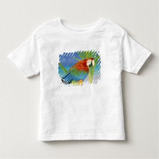 USA, Hawaii. Parrot Toddler T-shirt