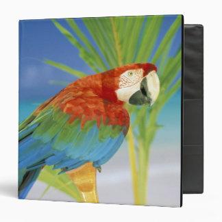 USA, Hawaii. Parrot Vinyl Binder