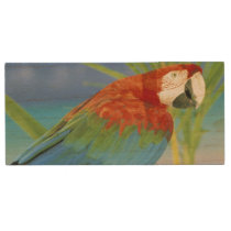USA, Hawaii. Parrot Wood USB Flash Drive