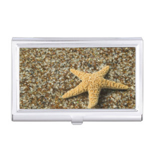 Pacific ocean business card holders cases zazzle usa hi kauai glass beach with star fish business card case reheart Images