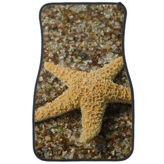 USA, HI, Kauai, Glass Beach with Star fish Car Floor Mat