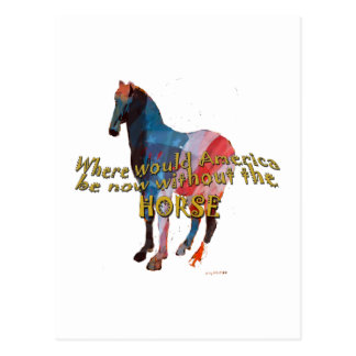 USA HORSE POSTCARD