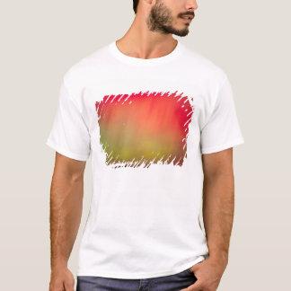 USA, Idaho. Aurora borealis, northern lights at 2 T-Shirt