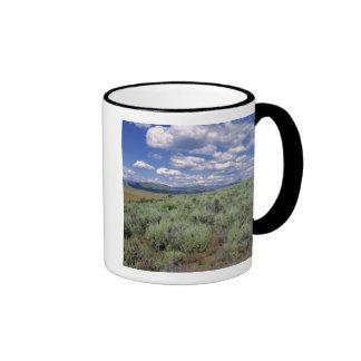 USA, Idaho, Camas Co. Sagebrush and lupine Ringer Coffee Mug