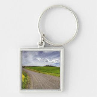 USA, Idaho, Idaho County, Canola Field Silver-Colored Square Keychain