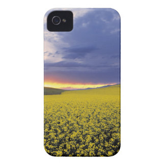 USA, Idaho, Swan Valley. A fiery sunset erupts iPhone 4 Case