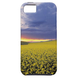 USA, Idaho, Swan Valley. A fiery sunset erupts iPhone SE/5/5s Case