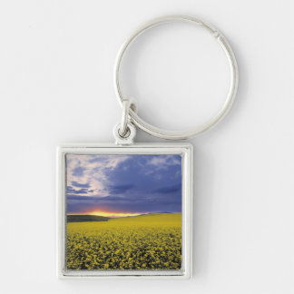 USA, Idaho, Swan Valley. A fiery sunset erupts Silver-Colored Square Keychain