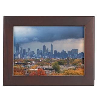 USA, Illinois, Chicago, cityscape Memory Box